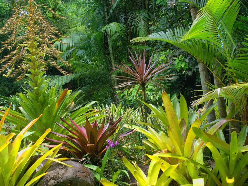 Il Giardino Esotico